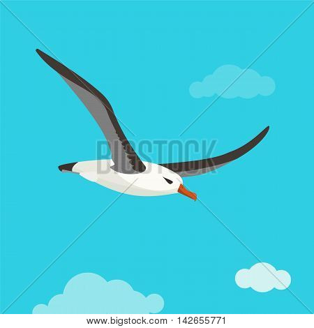 Albatross bird is flying in cloudy sky. Colorful vector flat illustration.