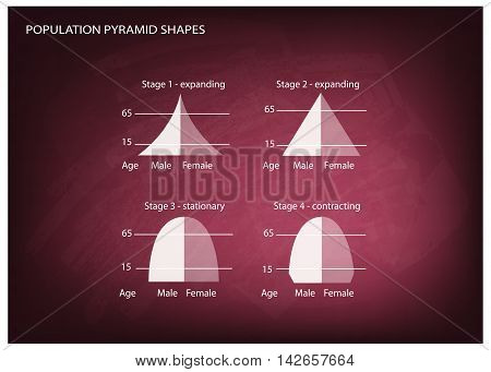 Population and Demography Illustration Set of 4 Types of Population Pyramids Chart or Age Structure Graph on Chalkboard Background.