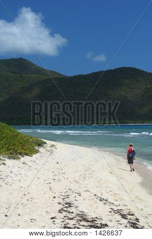 Beachcomver