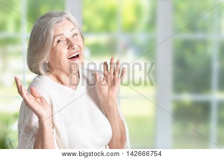 Portrait of a happy surprised senior woman at home