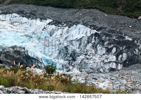 Landscape of Fox Glacier National Park with Grass in New Zealand
