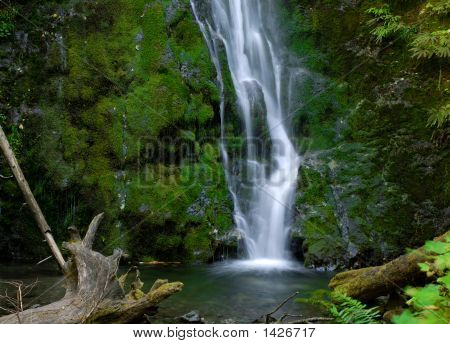 Lower Madison Falls, Pacific National Park, Wa