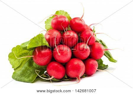 Bunch of fresh radish isolated on white background.