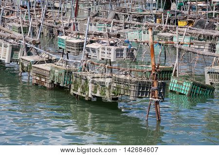 Cages For The Harvesting Of Shellfish