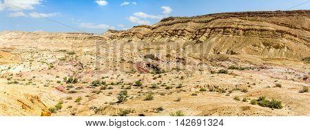 Landscape Makhtesh Gadol or Large Crater nature reserve in Negev desert in the early spring Israel