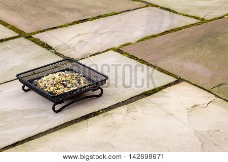 Garden patio with a tray of seed for the birds