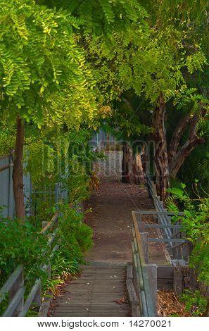 Riverside Path In Echuca Ausralia