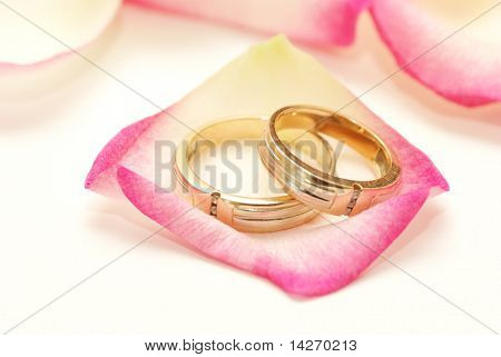 Anillos de boda en un pétalo de rosa rojo