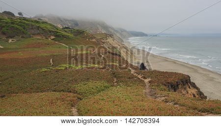 Coastal Views of the Pacific Ocean from Fort Funston, Golden Gate National Recreation Area, California, USA High bluffs on the most western edge of San Francisco, Fort Funston, on a summer foggy day.