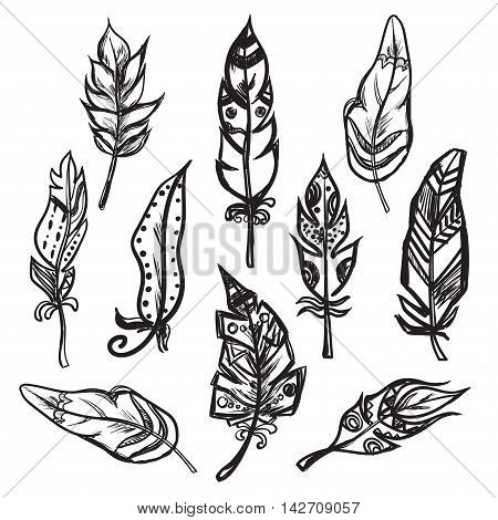 Set of ethnic feathers isolated on white background Vector illustration