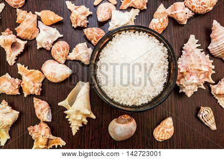 Shell background abstract spa bowl with sea salt
