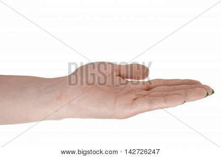 Open hand showing something, natural woman's skin, green manicure. Isolated on white background.