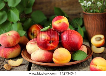 Fresh fruits on a wooden table: a mixture of apricot peach nectarine