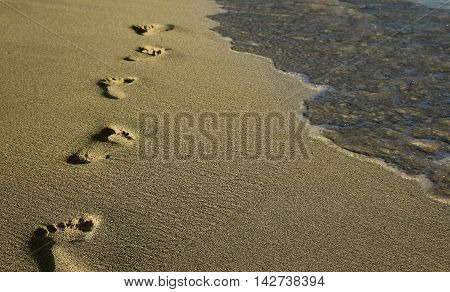 summer footprints in the sand on the beach