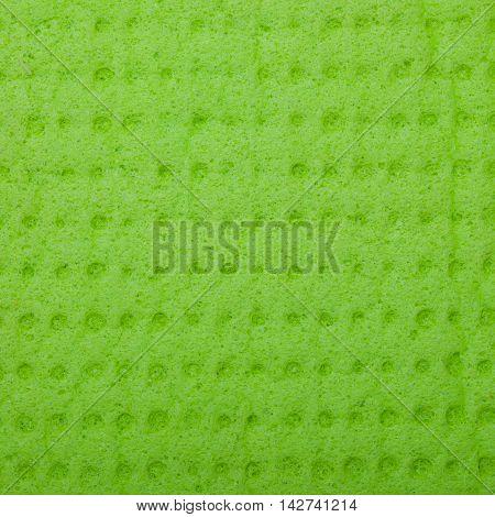 Closeup of vivid green sponge as background texture pattern. Macro. Square format.