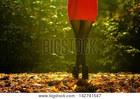 Person Walking Through Forest.