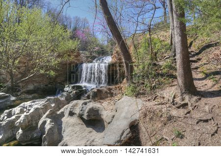 Tanyard Creek Park