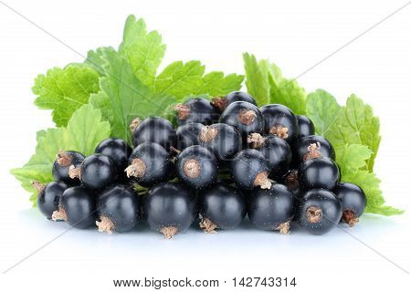 Black Currant Currants Berries Fruits Fruit Isolated