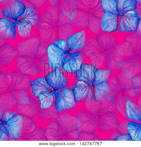 Blue violet hydrangea flowers composition seamless pattern background texture