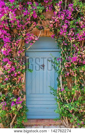 bougainvilla clad door in the picturesque Provencal village Grimaud France