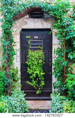 Green Entwined Door In Saint-paul-de-vence, Provence, France