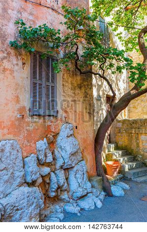 picturesque scene with a tree at an old house in the mountain village Gourdon Provence France that is listed under the most beautiful villages of France
