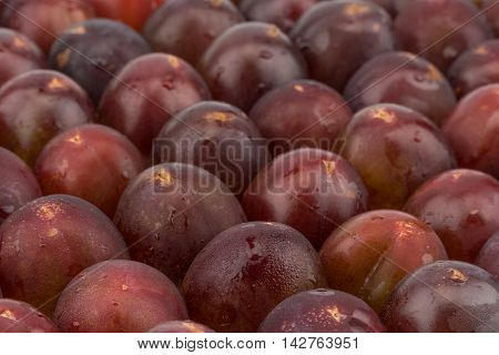 Plum harvest texture for background. Selective focus.