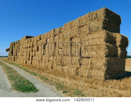 Bales Of Haystacks Stacked As A Wall On The Field With One Bale Sticking Out. Summer Farm Scenery. A