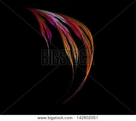 Abstract red and orange feather isolated on black background