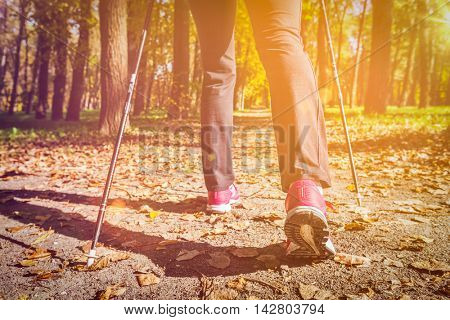 Nordic walking: adventure and exercising concept - woman hiking, legs and nordic walking poles in autumn nature. With flare and light leak