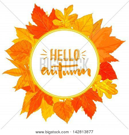 Autumn round frame with hand drawn golden leaves. Hello autumn text in the wreath. Fall greeting design