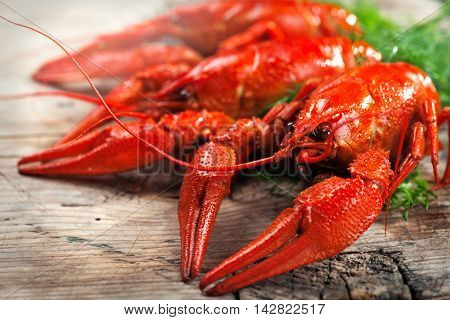 Crawfish. Crayfish. Red boiled crawfishes on a wooden table in rustic style, close-up, selective focus. Lobster closeup