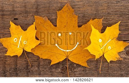 Autumn Leaves With Smile On Rustic Wooden Background. Autumn Shopping Concept. Top View.
