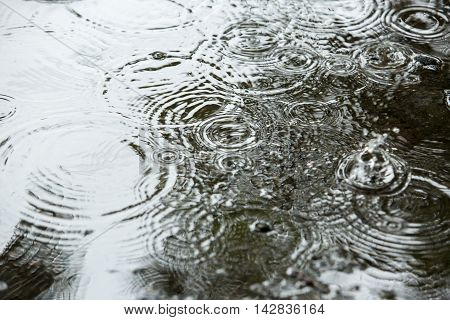 Beautiful Backgrounds With Falling Water Drops In A Puddle In The Rain