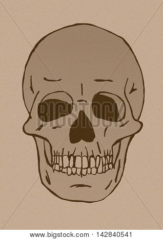 Skull head vintage image as isolated object