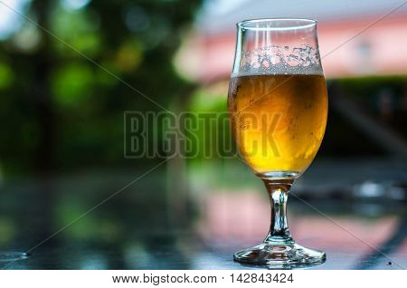 Tasty cold refreshing glass of lager beer