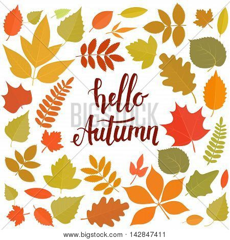 Round frame with leaves. Hello autumn handwritten lettering. Vector stock background.