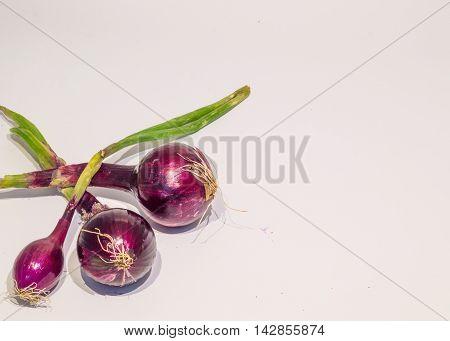 Tre cipolle rosse su uno  sfondo bianco