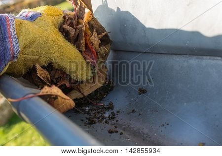Remove any leaves with work glove gutter