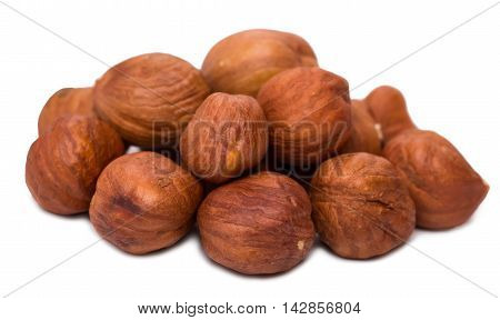 Nuts the filbert isolated d d d
