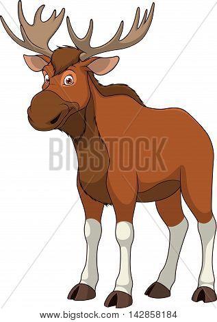 Vector illustration adult funny elk smiling on a white background
