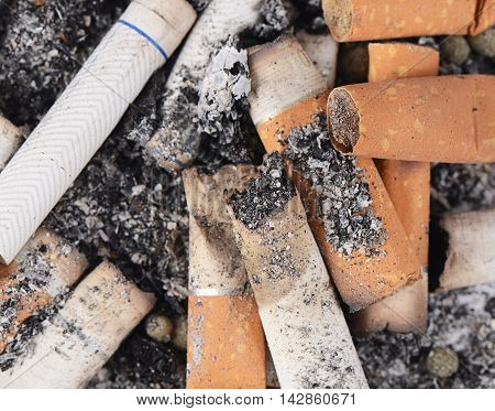 Cigarette Butts Amid The Ashes