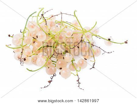 The white currant isolated d d d