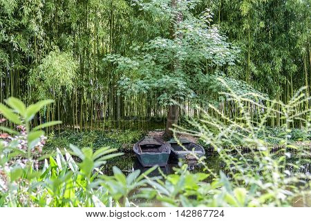 Looking through foliage to pair of green wooden boats moored by the side of a woodland pond surrounded by lush trees and bamboo