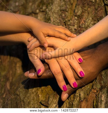 Diversity family concept. Four hands of the mixed race family together on the tree bark
