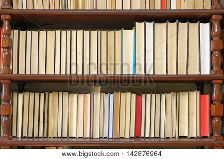 Literature Books Stacked in Big Wooden Bookcase