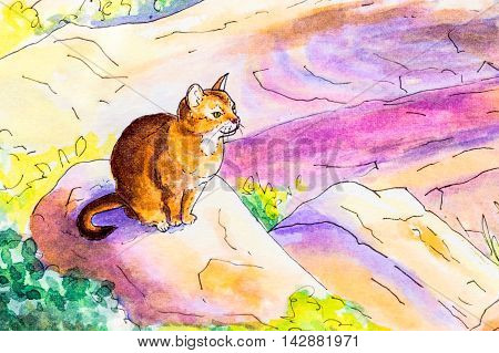 Original watercolor painting of an Abyssinian cat sitting on a rock in a garden