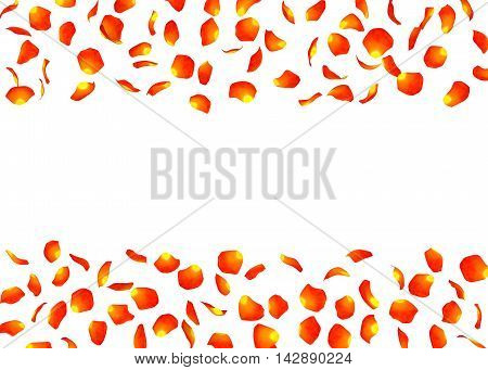 Orange Rose Petals Are Flying From Both Sides. There Is A Free Space For Your Photo Or Text