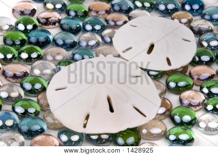 Sanddollarglass