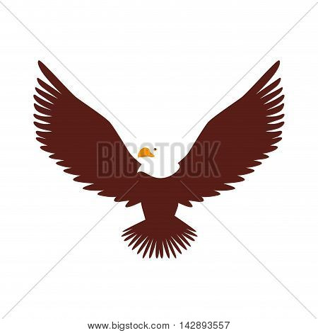 hawk animal bird america wildlife wing head open vector  illustration isolated